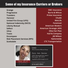 my ohio insurance carriers